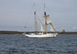 Tall ship in Nantucket Sound